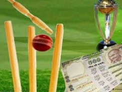 Best Cricket Betting Sites in Indian Rupees